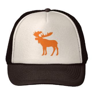 Simple orange brown moose hat