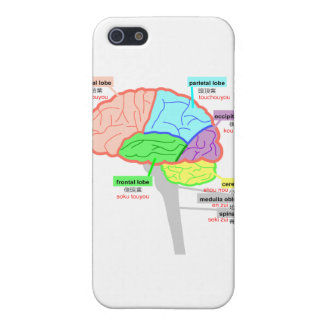simple parts of the brain japanese iPhone 5 covers