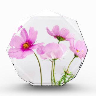 Simple Pink Flowers Award