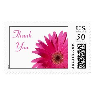 Simple Pink Gerbera Daisy Wedding Thank You Postage