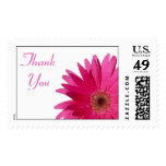 Simple Pink Gerbera Daisy Wedding Thank You Postage Stamp