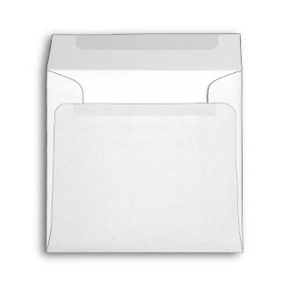 Simple Plain White Paper Envelope