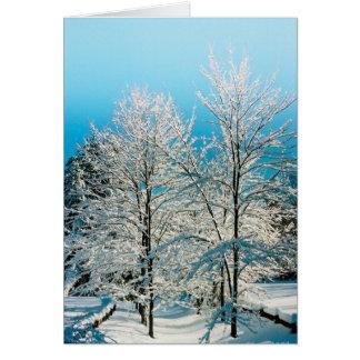 Simple Pleasures of the Season: Walden Pond Card