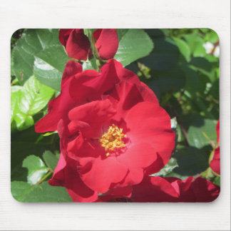 Simple Red Roses Mouse Pad