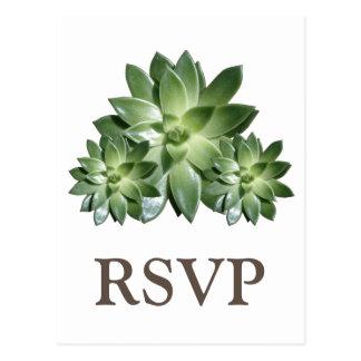 Simple Succulent Wedding RSVP Postcard