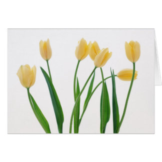 Simple Thank You Card - Yellow Tulips