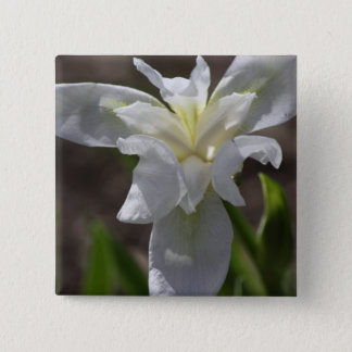 Simple White Heirloom (Cemetery) Iris Button