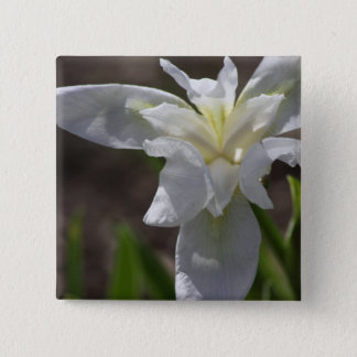 Simple White Heirloom (Cemetery) Iris Pinback Button