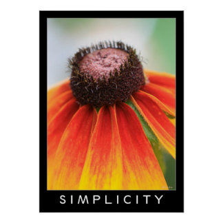 Simplicity Orange Wildflower 20x28 Inspiration Poster