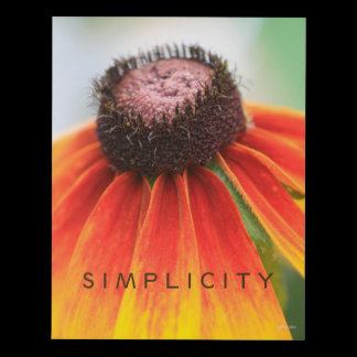 Simplicity Orange Wildflower Customizable Panel Wall Art