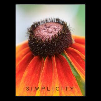 Simplicity Wildflower Orange Yellow Custom Postcard