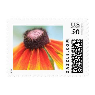 Simplicity Yellow Orange Wildflower Custom Postage