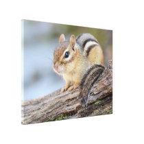 Simply Adorable Little Chipmunk Canvas Print