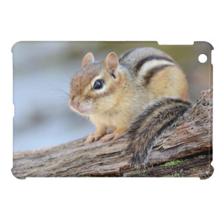 Simply Adorable Little Chipmunk iPad Mini Cover