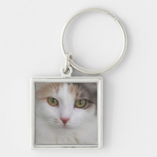 Simply Beautiful!  Summer, the cat. Silver-Colored Square Keychain