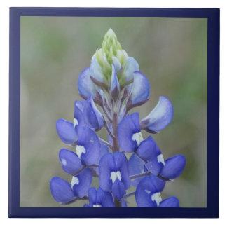 Simply Bluebonnet Flower Tile