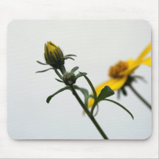 Simply... Floral Photgraphy Mouse Pad