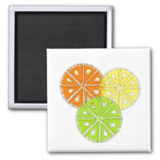 Simply Fruity Refrigerator Magnets