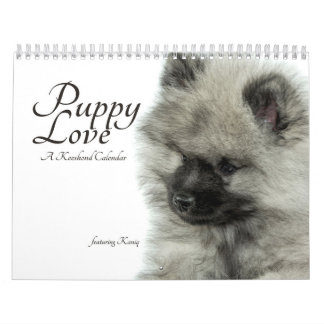 Simply Love Keeshond Puppy Calendar (Quoteless)