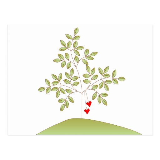 Simply Love Tree - Reception Card Postcard