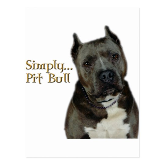 Simply PitBull Postcard