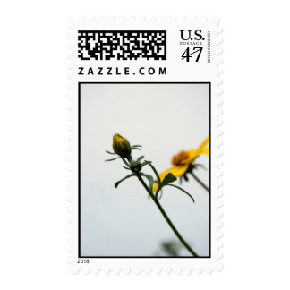 Simply... Postage