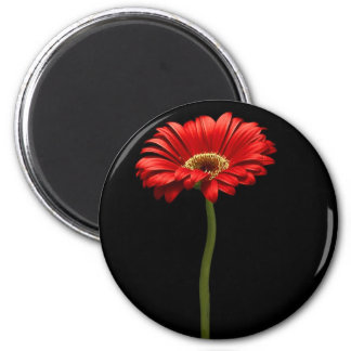 Simply Red 2 Inch Round Magnet