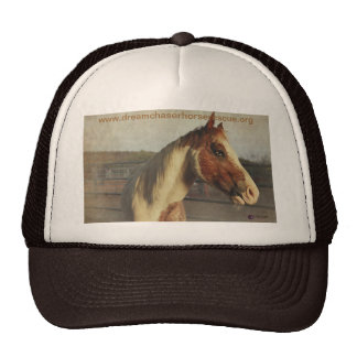 Simply Sinatra Hats