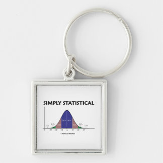 Simply Statistical (Bell Curve Attitude) Key Chain