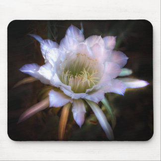 Simply Stunning Mouse Pad