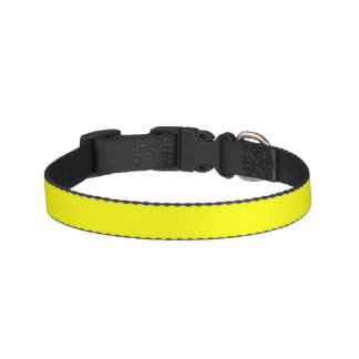 Simply Yellow Solid Color Dog Collar