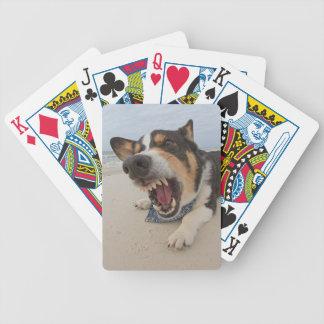 Simulación del ataque del tiburón baraja cartas de poker
