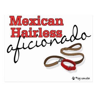 Sin pelo mexicano tarjeta postal