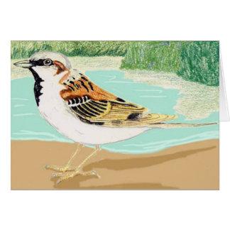 Sind Jungle Sparrow Greeting Card