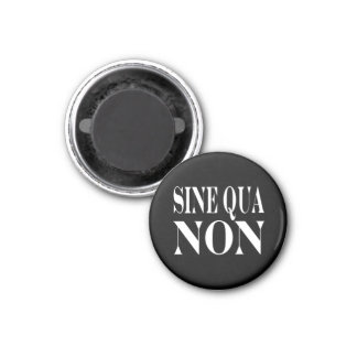 Sine Qua Non Famous Latin Quote: Words to live By Magnet