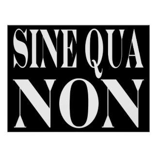 Sine Qua Non Famous Latin Quote: Words to live By Poster