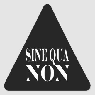 Sine Qua Non Famous Latin Quote Words to live By Triangle Stickers