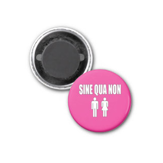 Sine Qua Non Romantic Latin Quote Valentine's Day Magnet