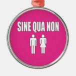 Sine Qua Non Romantic Latin Quote Valentine's Day Christmas Ornament