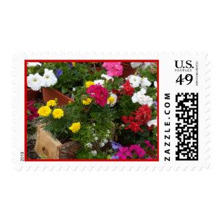 Sinfonía floral de los geranios sello postal