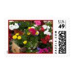 Sinfonía floral de los geranios sellos