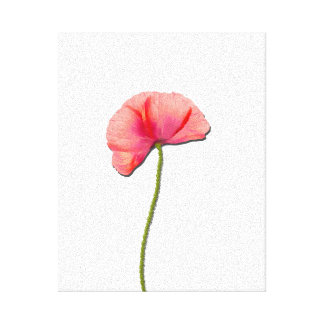 Sing red poppy flower minimalist simplicity canvas print
