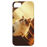 Singapore 6 iPhone 5 cases