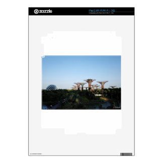 Singapore-Garden By The Bay iPad 2 Skins