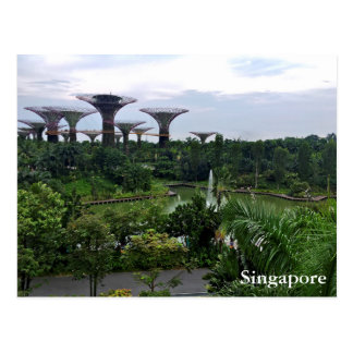 Singapore Gardens by the Bay Postcard
