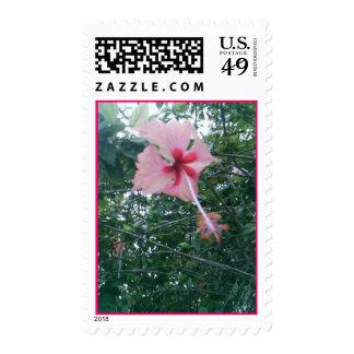 Singapore Memories I Postage Stamps