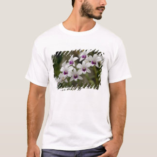 Singapore (Sanskrit for Lion City). National 2 T-Shirt