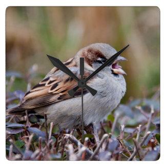 Singing bird square wallclock