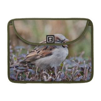 Singing bird MacBook pro sleeves