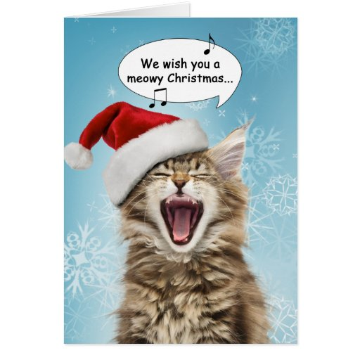 singing cat christmas card zazzle